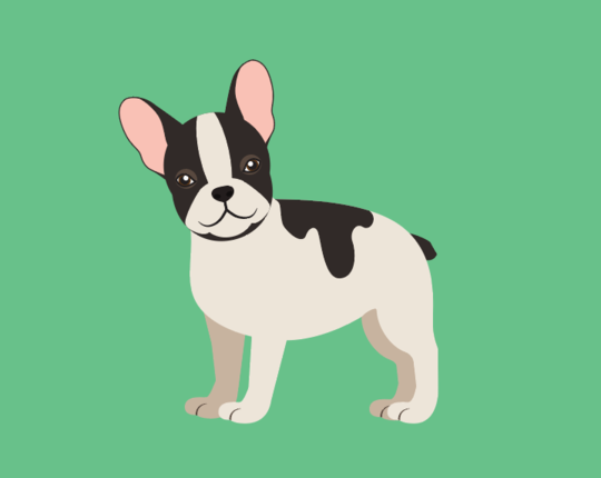 Frenchie French for Kids