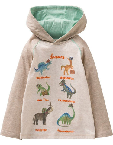 OILILY PULLOVER MIT DINOSAURIER