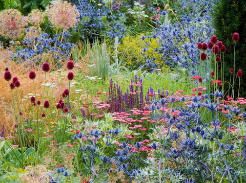 Tom Stuart Smith's beautiful garden designs