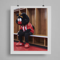 SoccerBible Print - Contemplating Cats