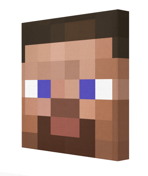 Minecraft Steve - Pics On Canvas