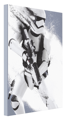 Storm Trooper - Pics On Canvas
