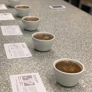 INTRODUCTION TO COFFEE - SCA CERTIFIED