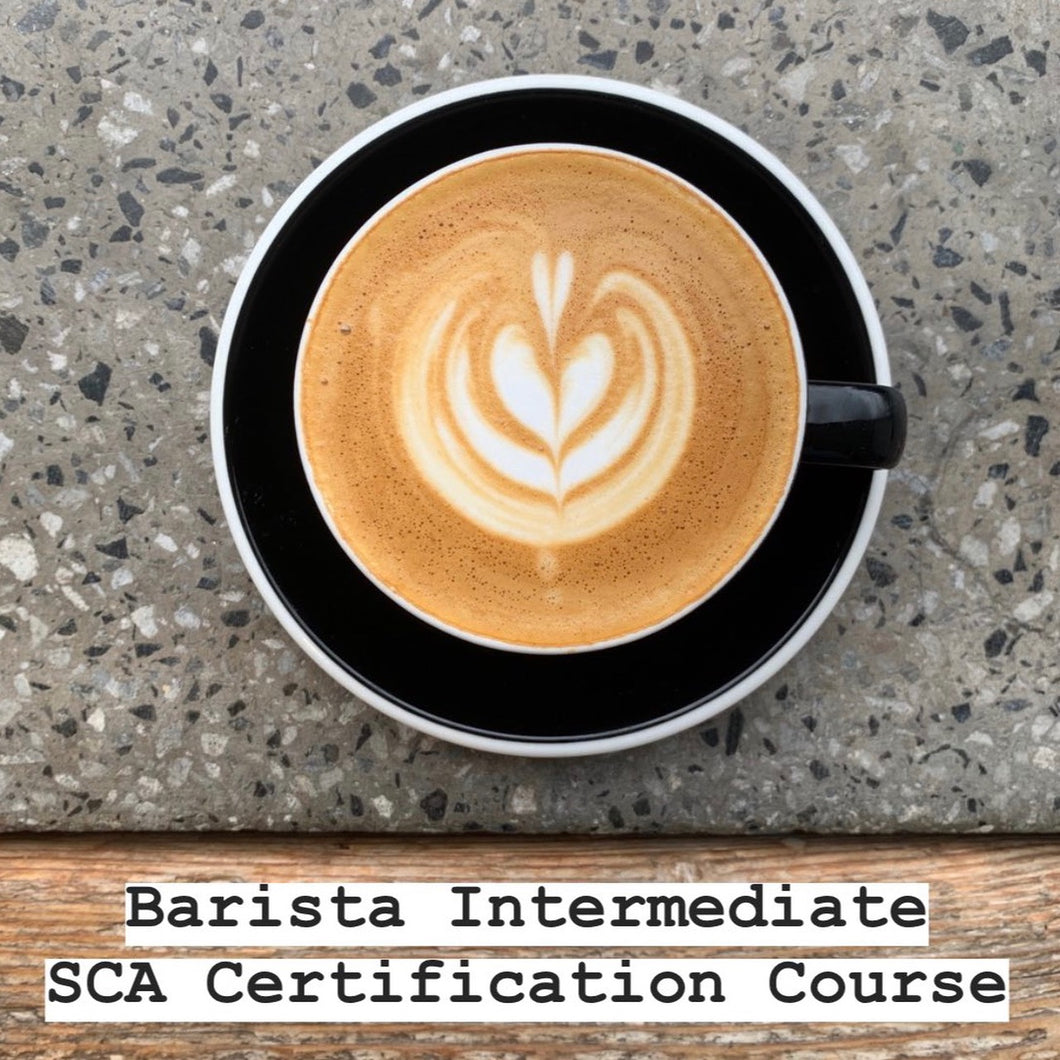 BARISTA INTERMEDIATE - SCA CERTIFIED