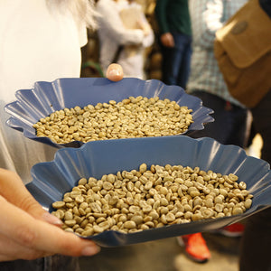 ROASTING WORKSHOP