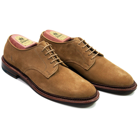 Alden Plain Toe Blucher in Tan Suede