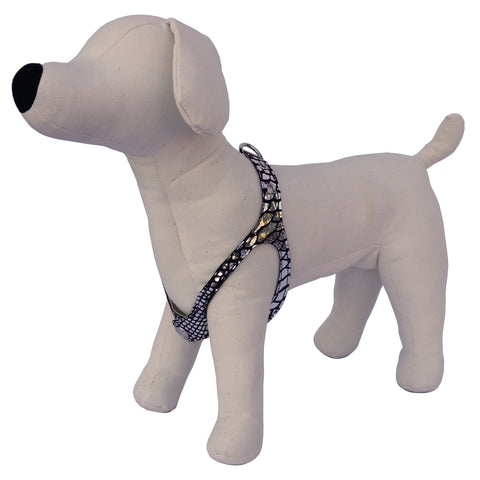 Fancy leather dog harnesses.  For our pooches that love to dress to impress.