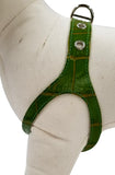 Green Apple  Croc No-Choke Dog Harness