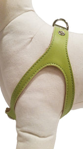 Lime Green No-Choke Dog Harness