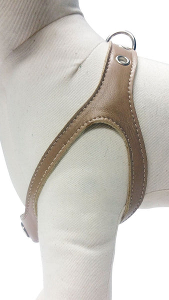 Camel (Tan) No-Choke Dog Harness