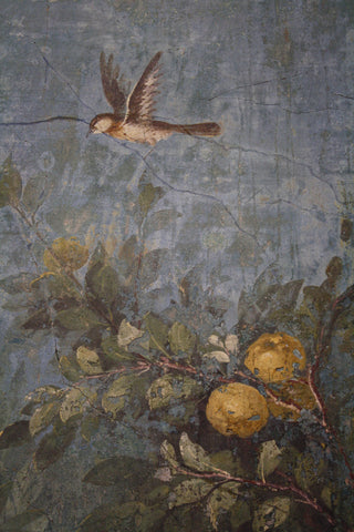 Livia's Villa garden fresco in Rome, wife of Augustus