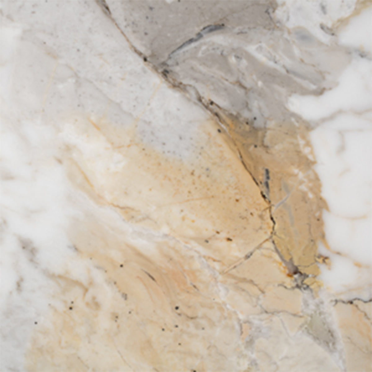 Calacatta Oro Marble Furniture at SORS