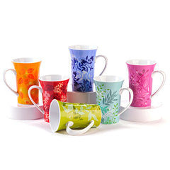Porcelain Mugs Set - forteassake