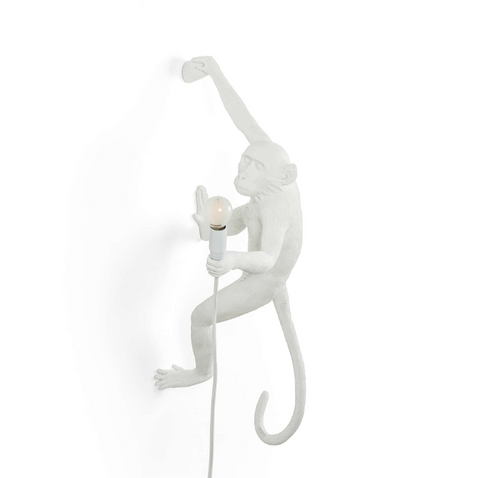 Ceiling Monkey Lamp