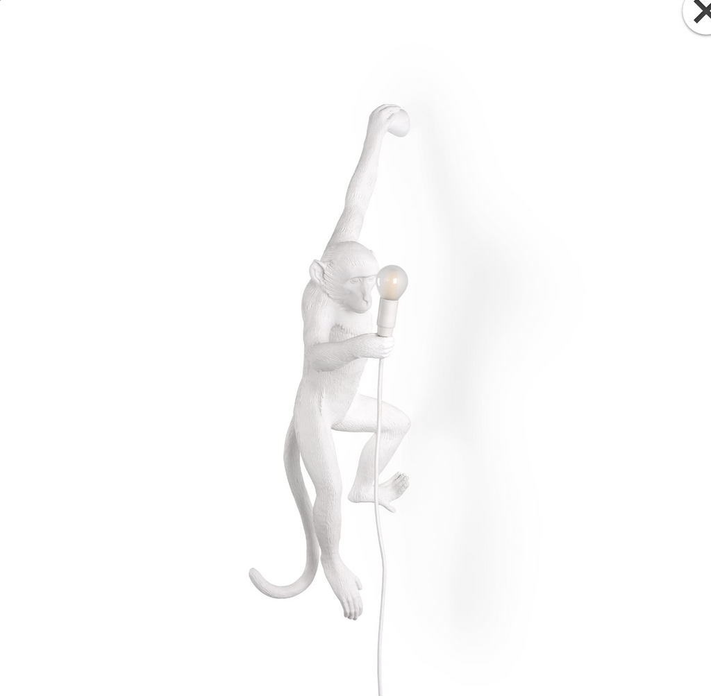 Wall Hanging Monkey Lamp OUTDOOR Version White Left