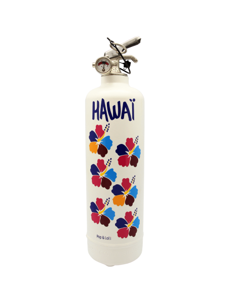 Hawaii Fire Extinguisher