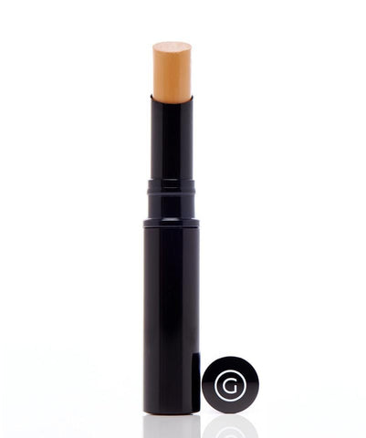 Gee Beauty Makeup - Warm Honey Photo Touch Concealer