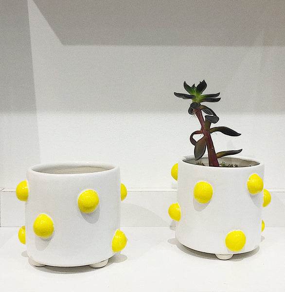 KB Clay Yellow Dot Planter