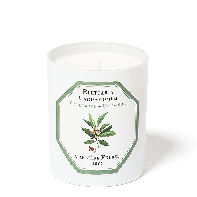 Cardamome - Cardamom Candle 6.5oz by Carriere Freres