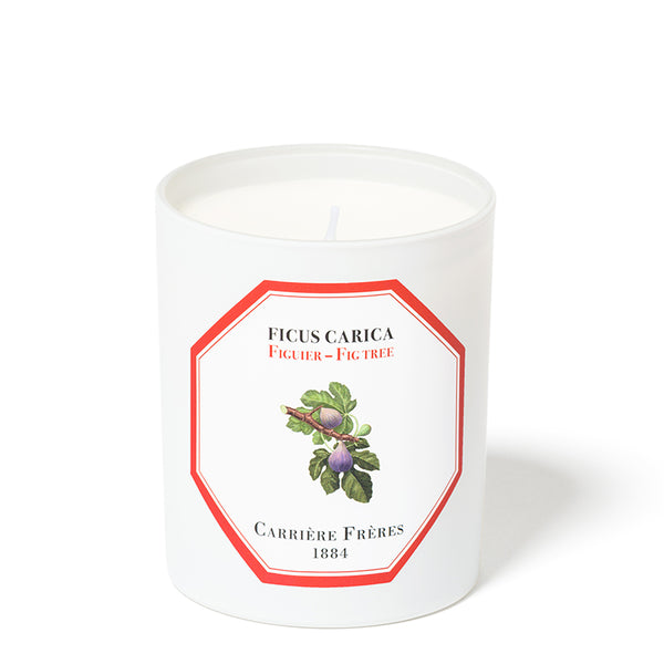 Figuier - Fig Candle 6.5oz by Carriere Freres