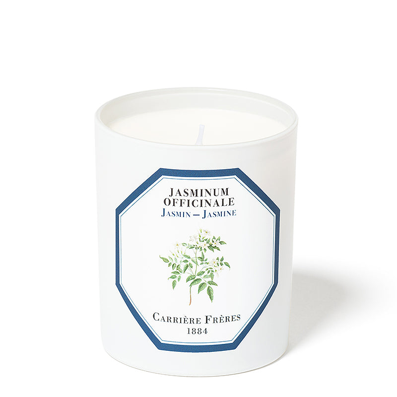 Jasmin - Jasmine Candle 6.5oz by Carriere Freres
