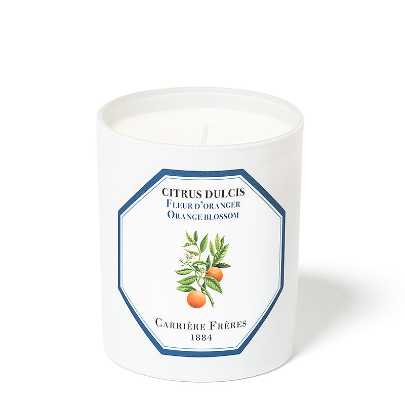 Fleur d'Oranger - Orange Blossom Candle 6.5oz by Carriere Freres