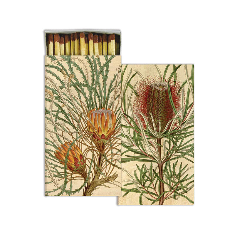 Protea - Matches