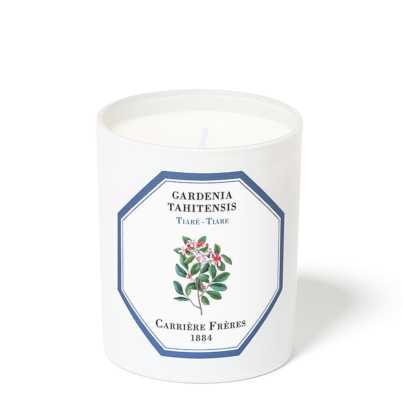 Tahitian Gardenia - Tiare Candle 6.5oz by Carriere Freres