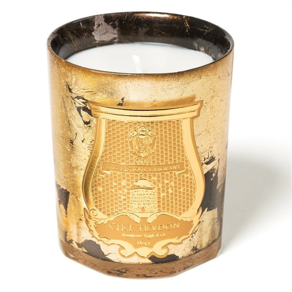 Ernesto - Limited Edition Holiday 2020 Gold Candle