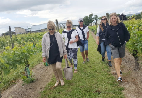 THE MARTINBOROUGH MINI WALK