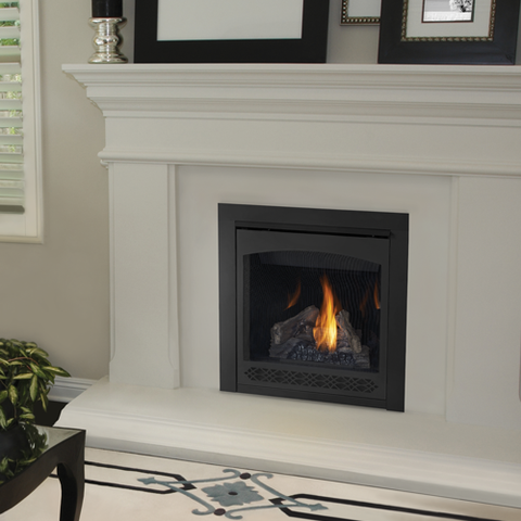 "Napoleon's Ascent 30 Direct Vent Fireplace is one of the most popular and versatile fireplaces on the market! This fireplace has a shallow depth of 16"" which allows for a tight space installation where space is lacking. Napoleon is a market leader in combining both heat and aesthetics into a fireplace. The Ascent serie"