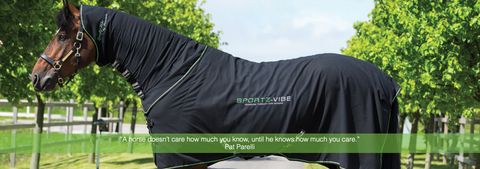 Sportz-Vibe Massage Therapy for Horses | HorseFit NZ