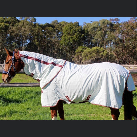 Amigo Aussie All Rounder Summer Sheet - Classic Front