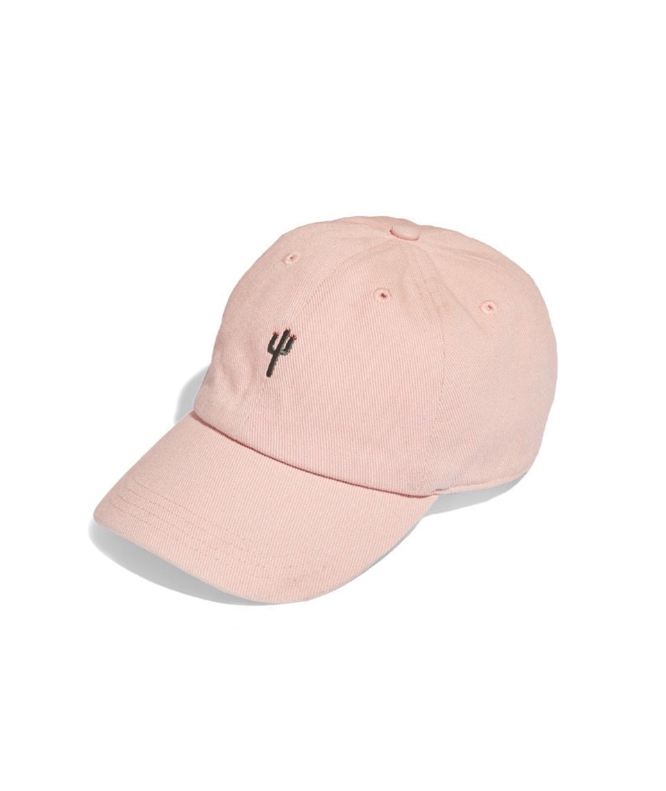 Cactus Baseball Hat in Rose Cloud