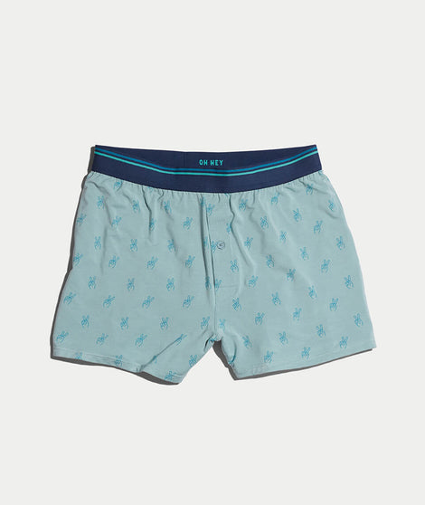 Best Boxers Ever in Faded Teal