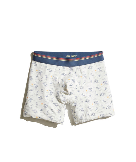 Best Boxer Briefs Ever in ML Print