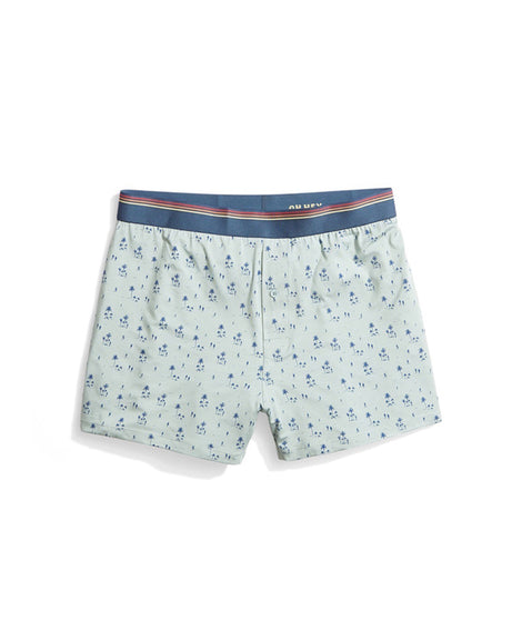 Best Boxers Ever in Cabana Print