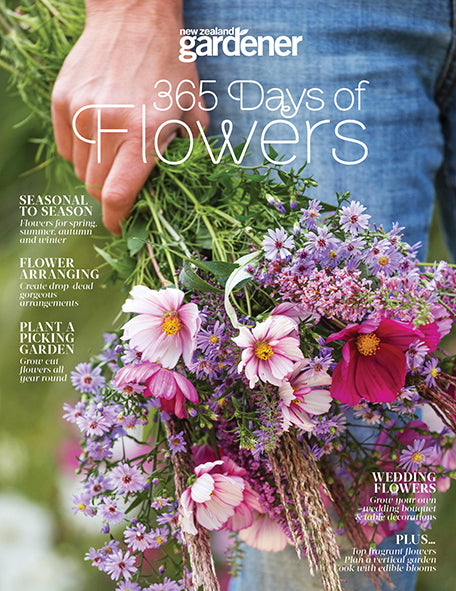 365 Days of Flowers - Special Edition