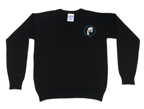 Thomas Jefferson V-Pullover Sweater