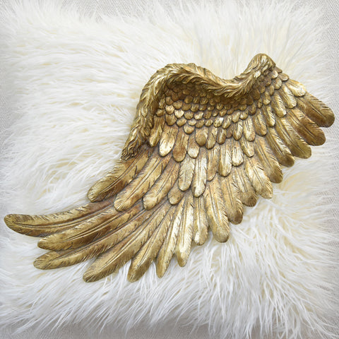 Fifine Wings Gold Tray