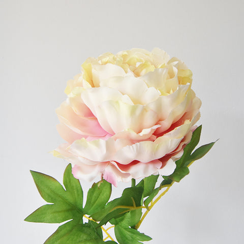 Decorative Peony Sorbet Flower, Lemon Raspberry Mix