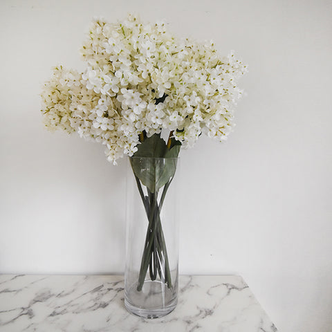 Decorative Flowers - Grandiflora Hydrangeas in a glass vase