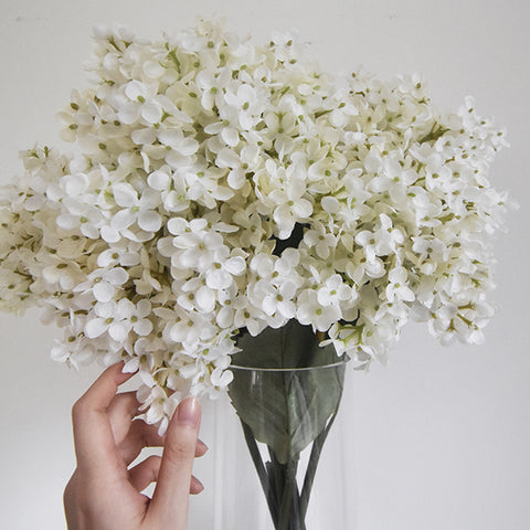 Decorative Flowers - Grandiflora Hydrangeas for home decor