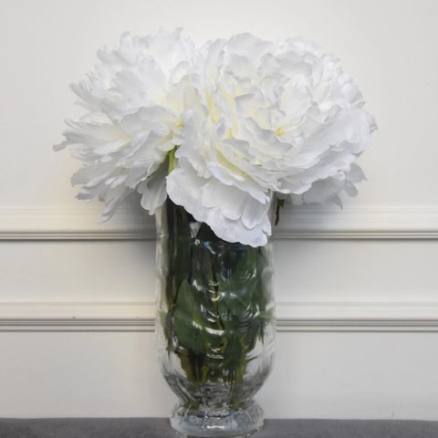 Decorative Peony Duchess Flower, White