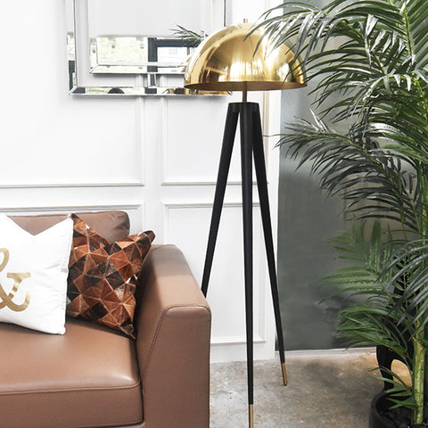Charles Gold Black Metal Floor Lamp