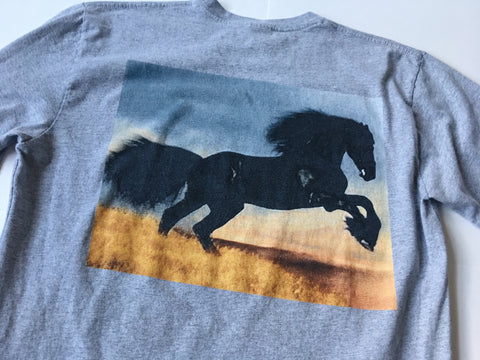 Supreme Stallion LS Tee - Gray