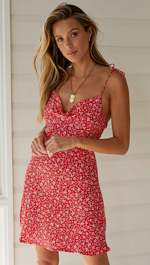 Pretty Thoughts Dress (Red Floral)