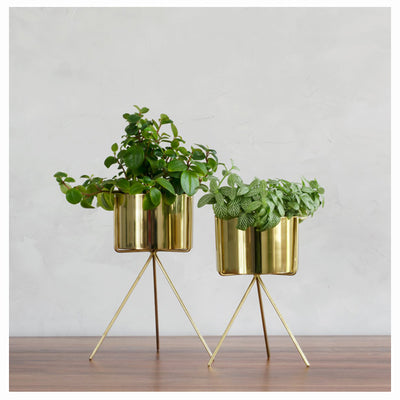 MINIATURE GOLD PLANTER