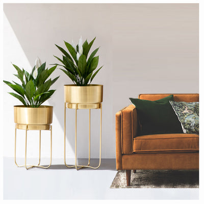 GOLDEN QUADRILATERAL PLANTER