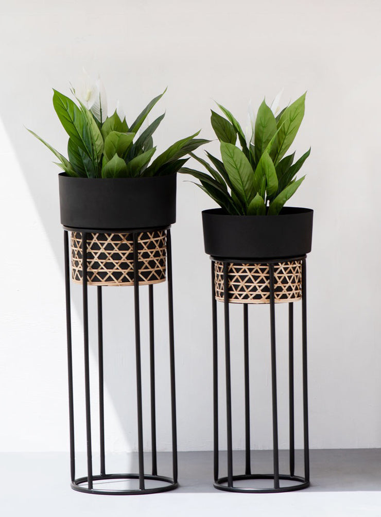 BARREL CANE PLANTER